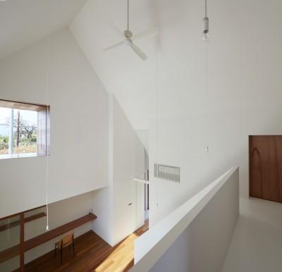 吹き抜け (大垣の家 / インナーテラスに囲まれた三角屋根の家)