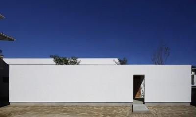 【ikenouchi】塀をくぐると広がる開放感。移り変わる光、美しい景色や木肌が美しい平屋