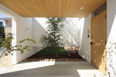 玄関アプローチ (【ikenouchi】塀をくぐると広がる開放感。移り変わる光、美しい景色や木肌が美しい平屋)