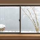 対庭の家の写真 リビング地窓