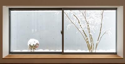 対庭の家 (リビング地窓)