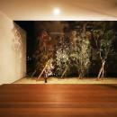 【ama】美しいデザインを突き詰めた街中で異彩を放つ家の写真 庭