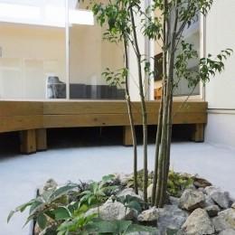 須賀崎の家  ロの字のコートハウス (中庭)
