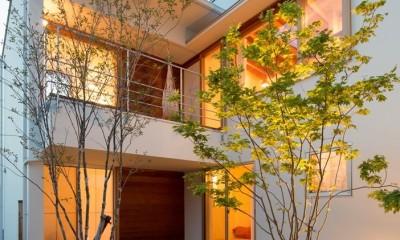 堀之内の家/北欧家具に囲まれて過ごす家 (中庭)