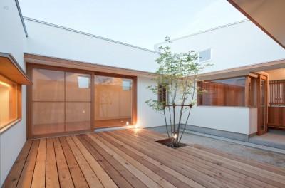 外観 (高浜の家/中庭を囲む平屋の住まい)