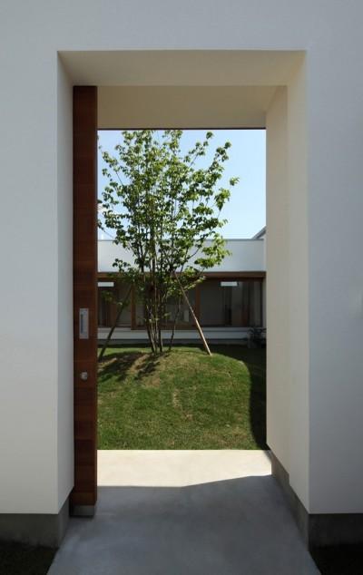 中庭に続く引き戸 (海東の家/地に近い暮らし 中庭が広がる住まい)