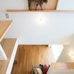 ガレージのある家/趣味が満載、ネコとバイクとガレージハウス (吹き抜け)
