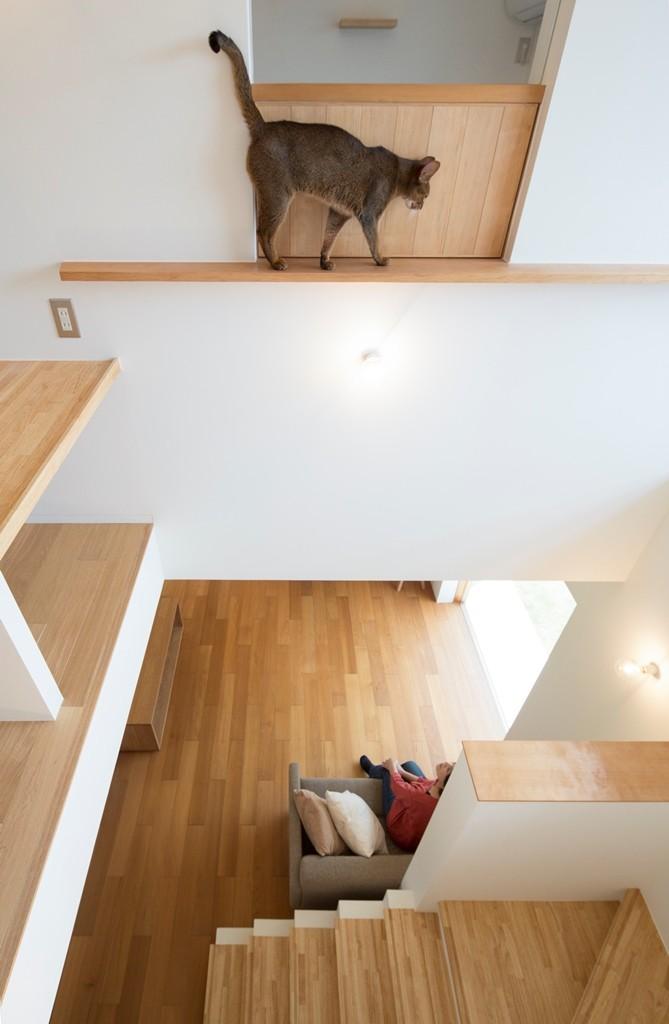リビングダイニング事例:吹き抜け(ガレージのある家/趣味が満載、ネコとバイクとガレージハウス)
