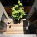 箕面 中庭のある住まいの写真 中庭
