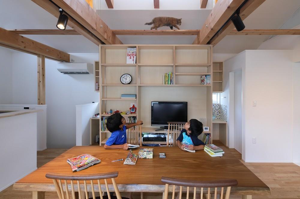 木村哲矢建築計画事務所「箕面 ねこと暮らす住まい」