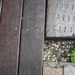 サロンのある家 ー汚れても、古くなっても、可愛いおうち。オランダのアパートメントのような家ー (外構)