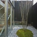 牛川の家-ushikawaの写真 中庭