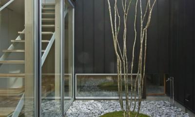 牛川の家-ushikawa (中庭)