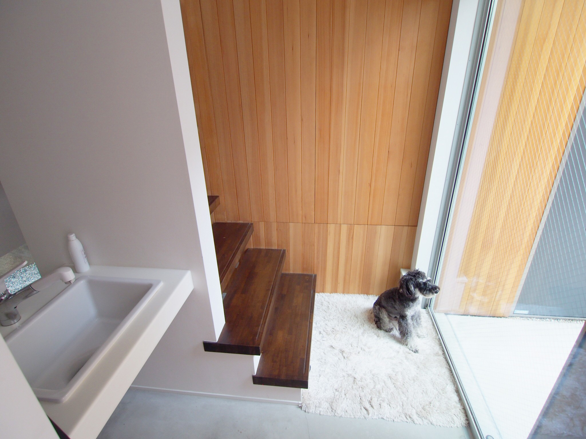 玄関事例:ペット洗い場のある玄関エントランス(Shibuya-somo)