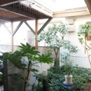 書斎とアトリエのある家|A HOUSEの写真 中庭