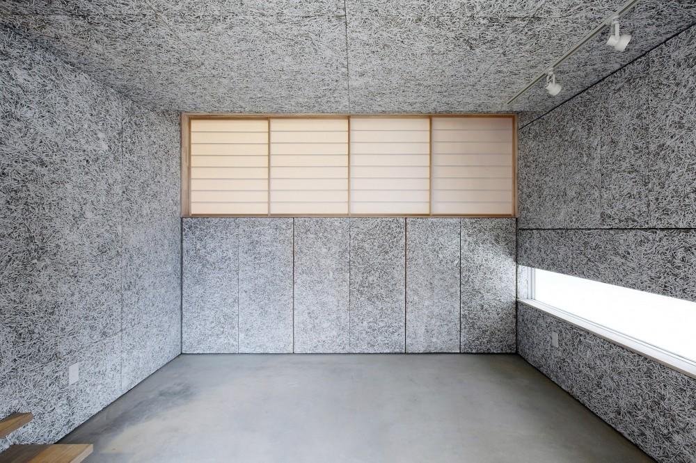 Tajima no ie -スキップフロアの家- (玄関ホール)