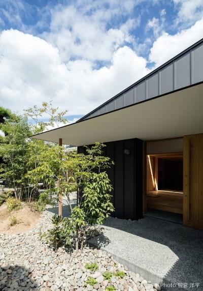 Hanare -立体的な屋根形状の家- (外観)