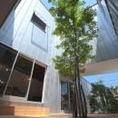 Hatsugano no ie  -浮遊する家-の写真 中庭