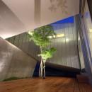 Hatsugano no ie  -浮遊する家-の写真 夜景 中庭