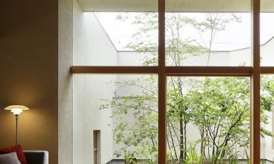 長泉町の家 (003)
