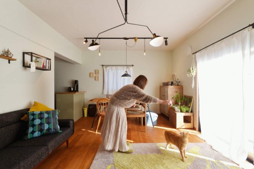 猫とくつろぐ長い廊下の家 (猫と遊ぶ)