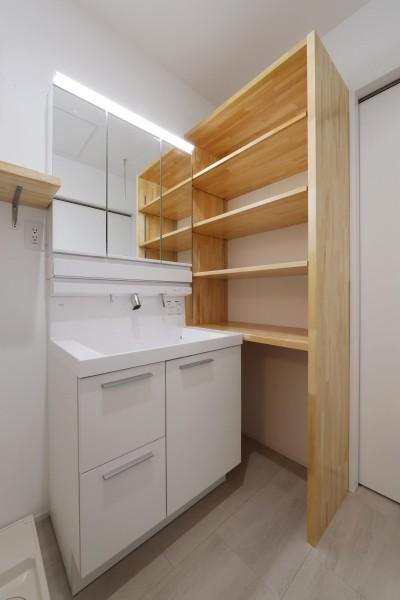 洗面室 (収納に工夫をもたらせた家)