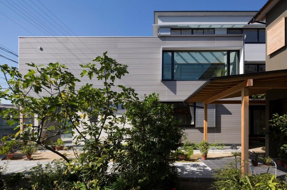 鶴見の家/線路沿いの細長い敷地に建つ木造3階建ての2世帯住宅 (外観/)