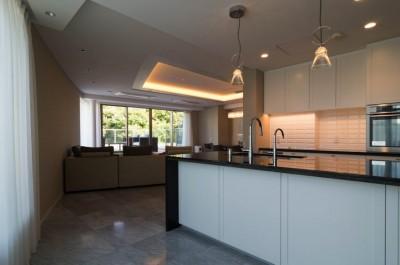 キッチン (プレミアムマンションのリノベーション計画〜都会の森の家)
