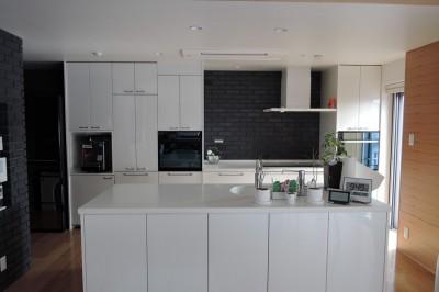 「立体庭」の住宅 (キッチン)