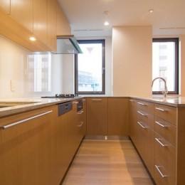 プレミアムヴィンテージマンションのリノベーション (キッチン)