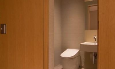 プレミアムヴィンテージマンションのリノベーション (トイレ)