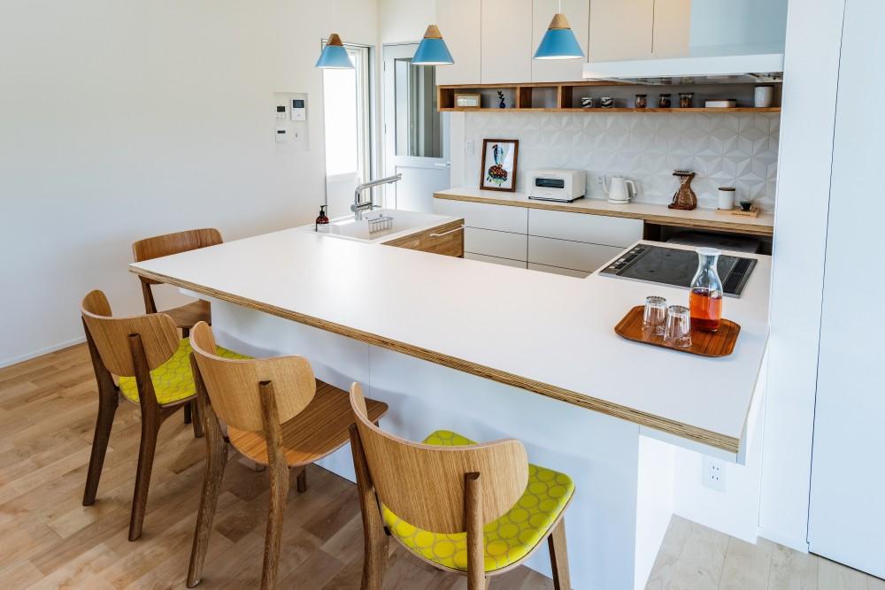シンプルを追求した平屋 (キッチン)