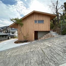 東生駒の家 (ファサード)