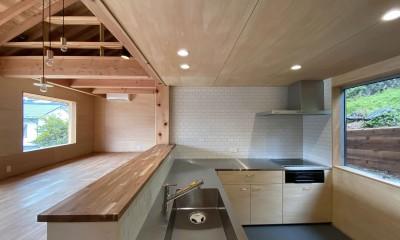 東生駒の家 (キッチン)