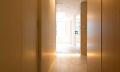 プレミアムヴィンテージマンションのリノベーション (廊下(廊下からリビングへ))