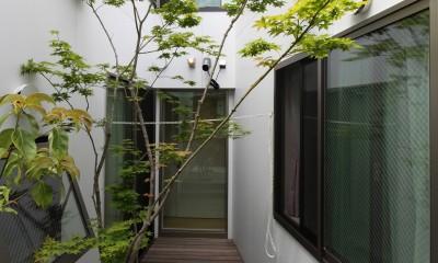 府中の家2~大きなルーフバルコニーのある開放的な家 (中庭)
