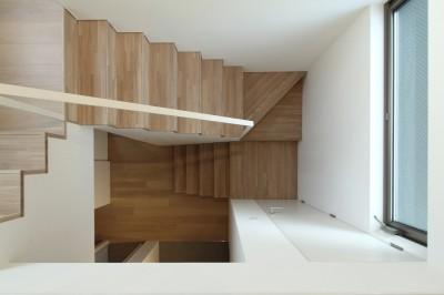 階段見下ろし (府中の家2~大きなルーフバルコニーのある開放的な家)