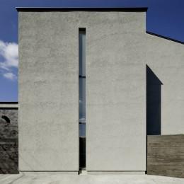 三鷹の家~緑を望む大開口の家 (外観)