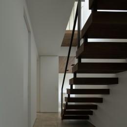 三鷹の家~緑を望む大開口の家 (廊下)