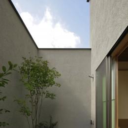 三鷹の家~緑を望む大開口の家 (和室に接するデッキテラス)