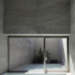 三鷹の家~緑を望む大開口の家 (バスコートのある浴室)