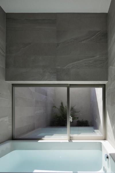 バスコートのある浴室 (三鷹の家~緑を望む大開口の家)