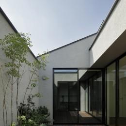 三鷹の家~緑を望む大開口の家 (ルーフバルコニー)