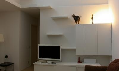 K邸 / 猫と犬が共存するためのリフォーム (リビング)