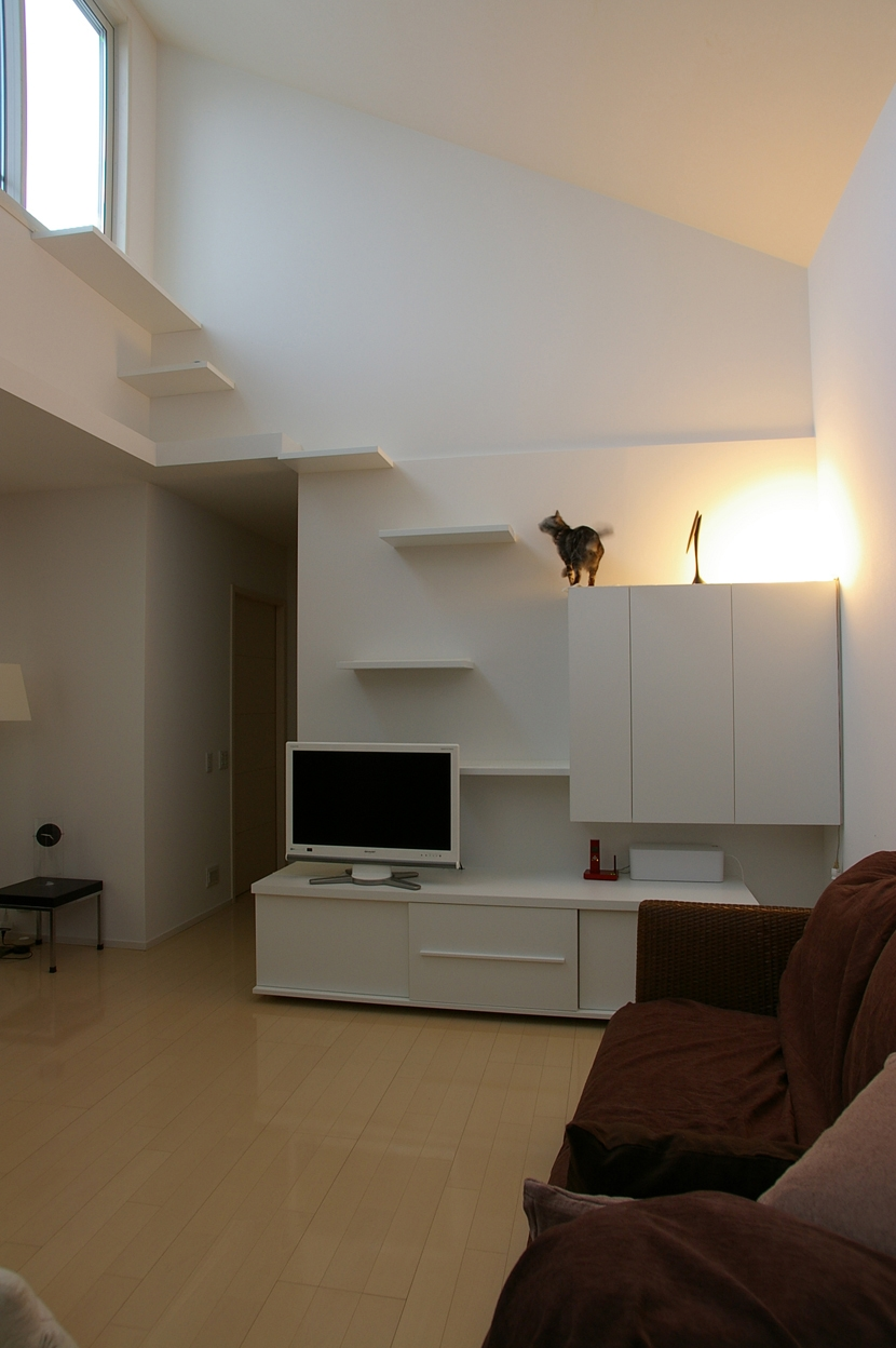 建築家:森吉直剛「K邸 / 猫と犬が共存するためのリフォーム」