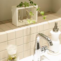 S邸-ごく普通のマンションが猫も喜ぶ「光と風がまわる」空間に (洗面所)