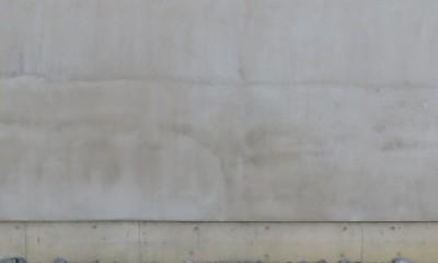 アオダモと回廊の家