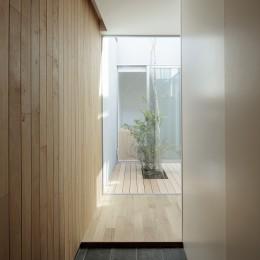 明大前の家 (中庭へと視線が抜ける玄関)