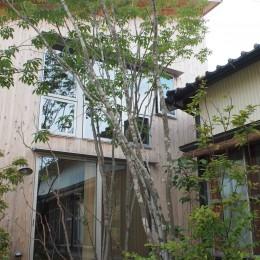 遠州おおやねの家〜とおり土間の家〜 (植栽は自然に)