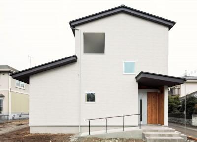外観 (Two families House in Mito)